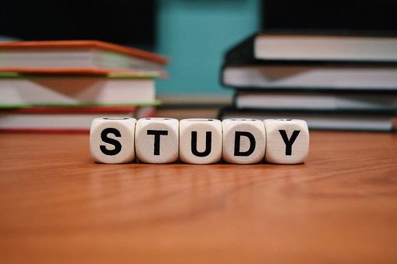 英語を学習する目的